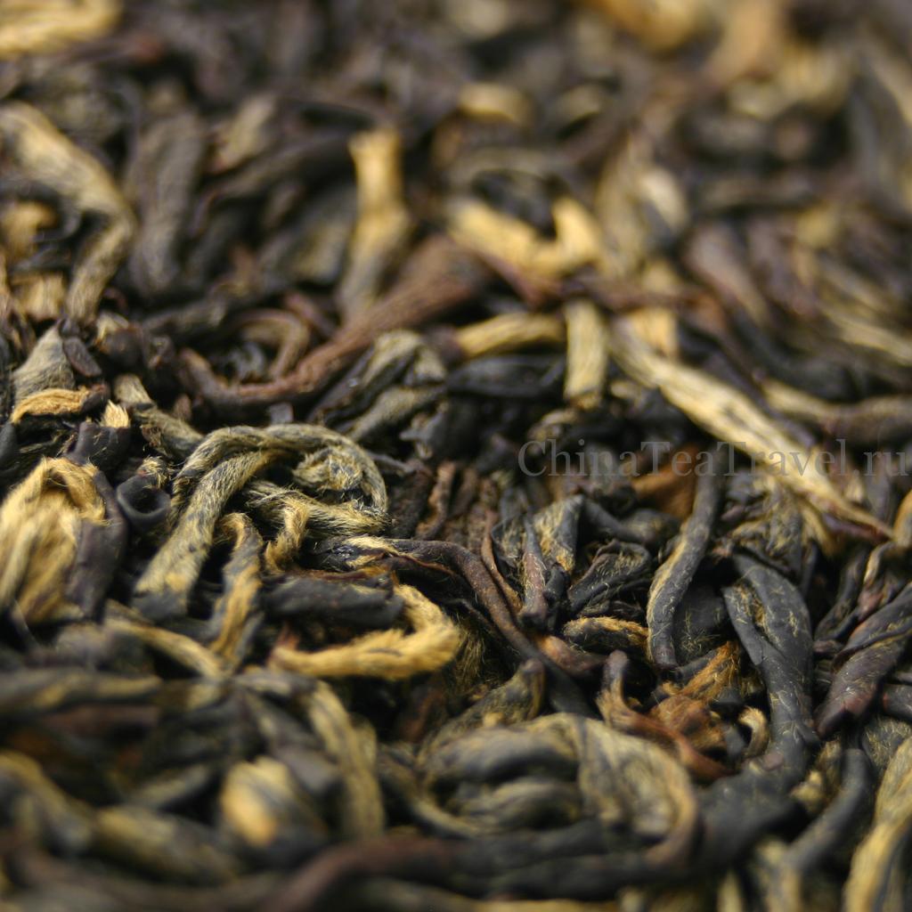 Красный чай из Гу Шу сырья. Ailao Gu Shu Sai Hong Spr'18 макросъемка