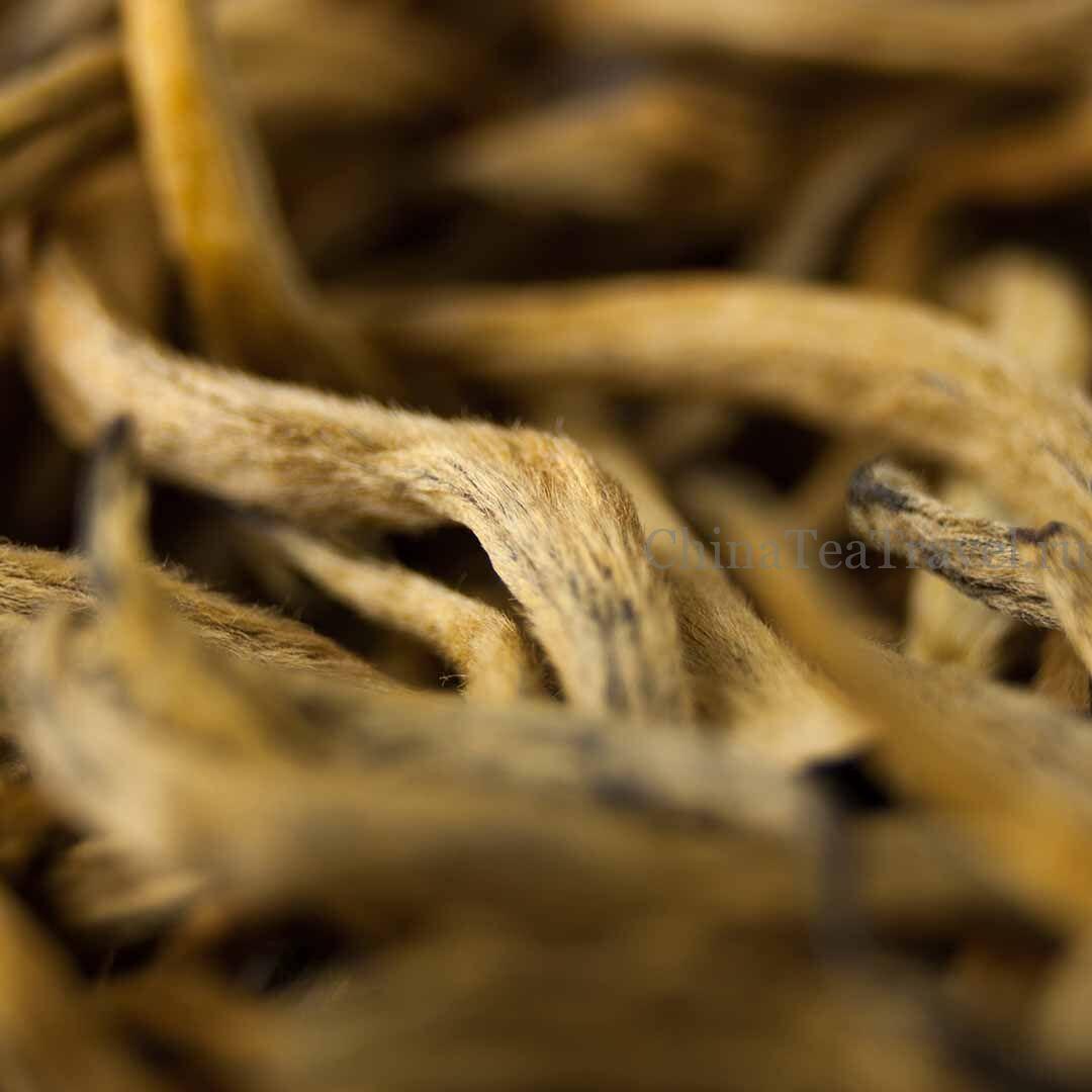 2 Красный чай из Фенцина «Большая золотая почка» Feng Qing Da Jin Ya Dian Hong '19 Spr. Tea bushes 100 y.o.