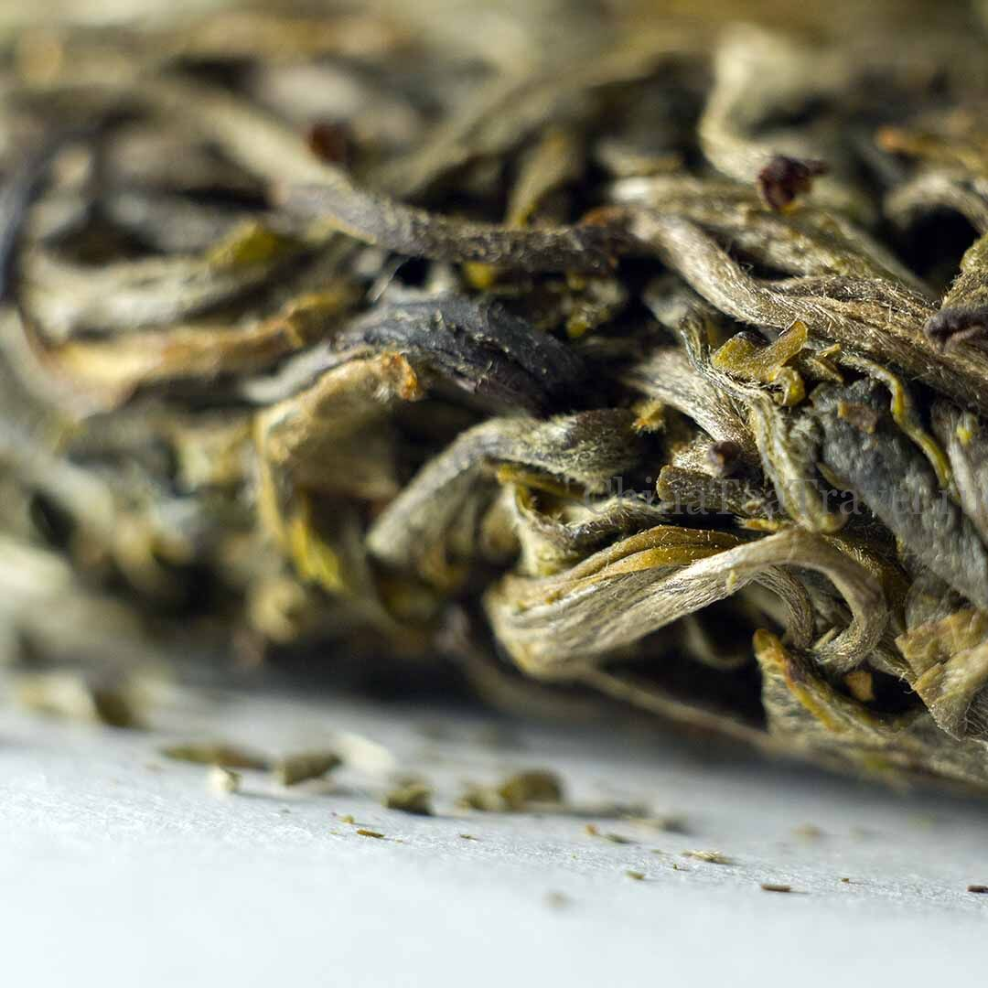 2 Шен пуэр из сада Маденг. «Чайный сад племянницы». Da Shu Sheng Tai Sheng Puerh '19 Spr. Tea bushes 80-100 y.o.