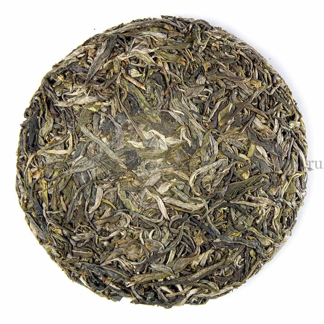 1 Шен пуэр из сада Маденг. «Чайный сад племянницы». Da Shu Sheng Tai Sheng Puerh '19 Spr. Tea bushes 80-100 y.o.