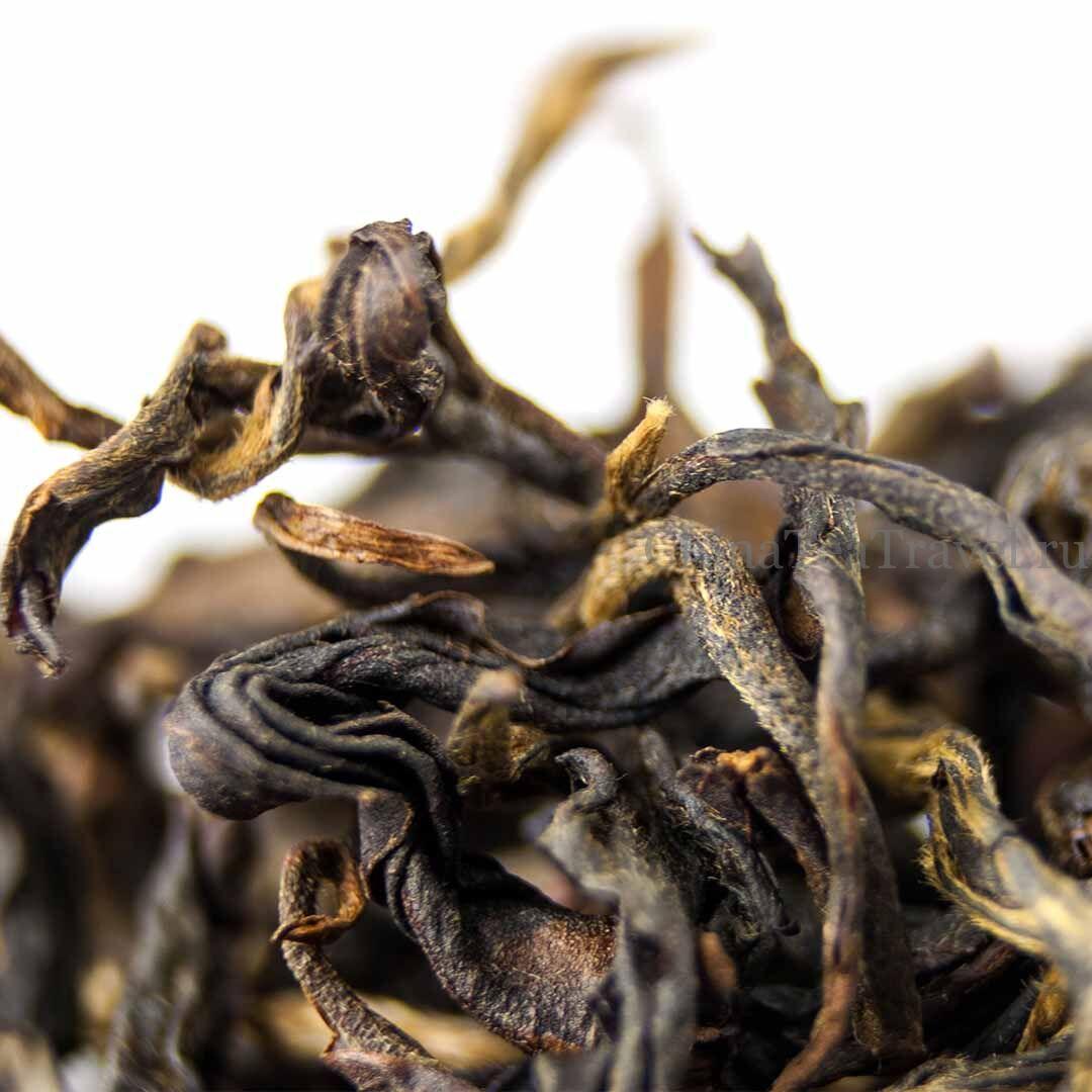 2 Красный чай «Сила жизни» Ma Deng Da Shu Sai Hong '19 Spr. Tea bushes 100 y.o.
