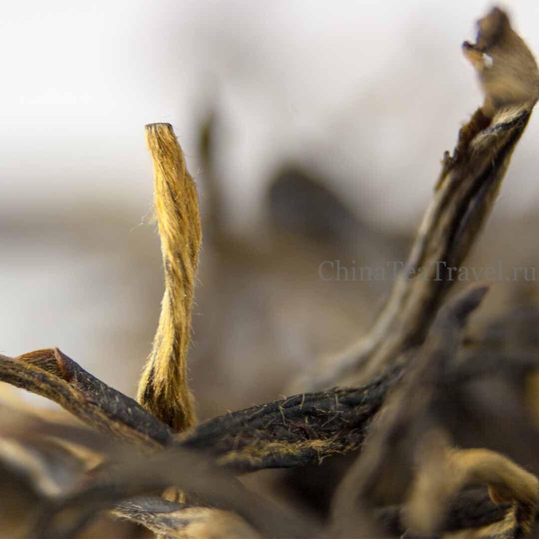 4 Красный чай со старых деревьев сада Маденг «Пламя гор». Ma Deng Gu Shu Hong Cha '19 Spr. Tea trees 100-150 y.o.