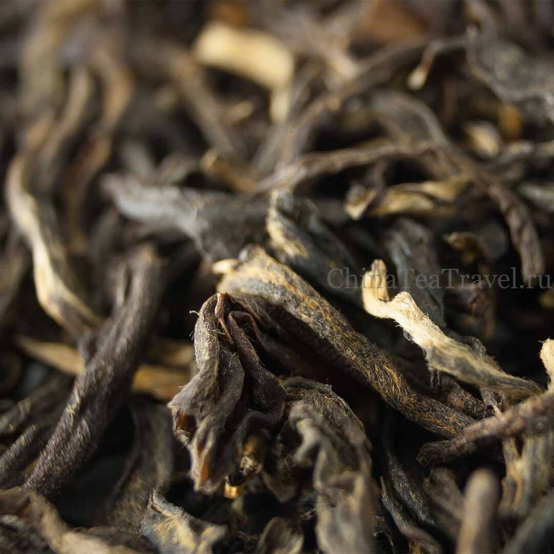 3 Красный чай общего сбора «Золото Уляни». Wulliangshan Gu Shu Hong Cha '19 Spr. Tea trees&bushes 120 y.o.