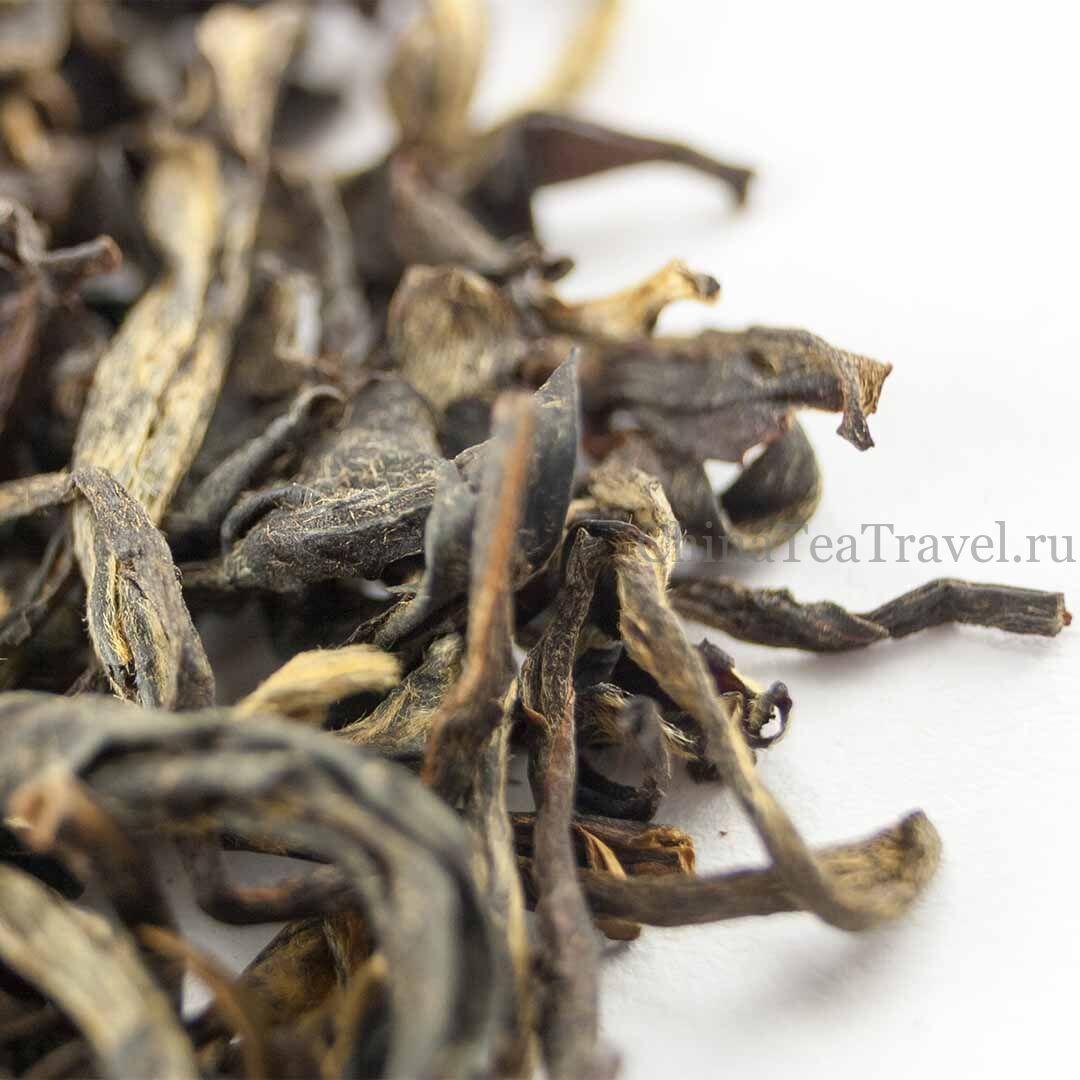 4 Красный чай общего сбора «Золото Уляни». Wulliangshan Gu Shu Hong Cha '19 Spr. Tea trees&bushes 120 y.o.