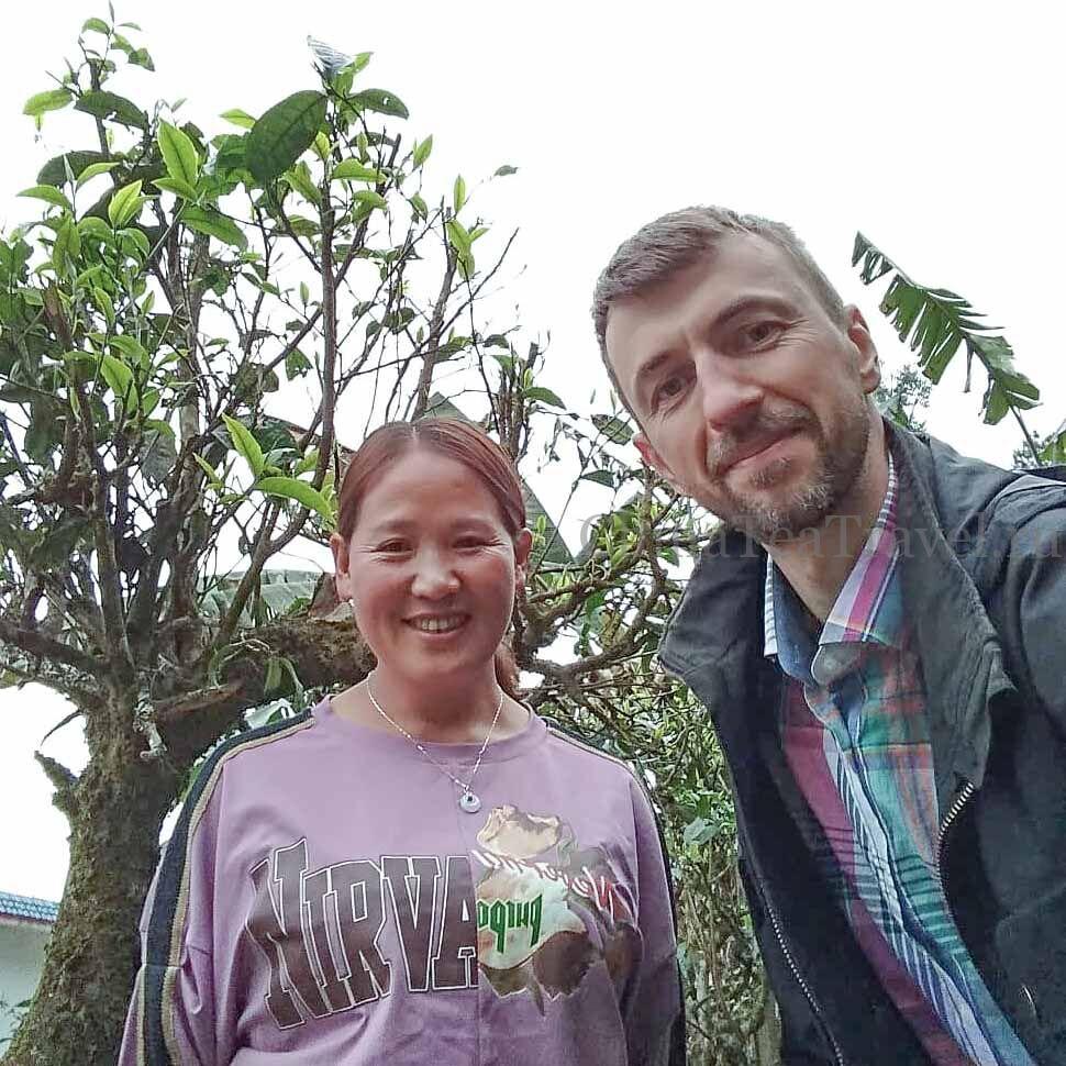 3 Шен пуэр из сада Маденг. «Чайный сад племянницы». Da Shu Sheng Tai Sheng Puerh '19 Spr. Tea bushes 80-100 y.o.